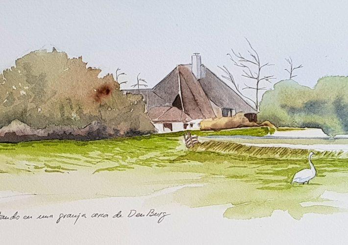 Cisne y granja en Den Burg