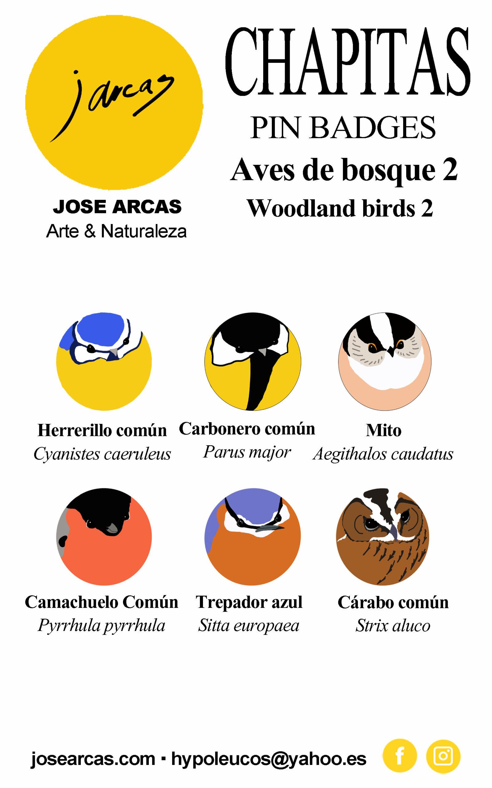 Lote de 6 chapitas de Aves de Bosque 2