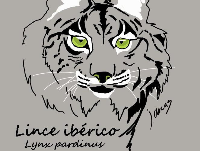 Diseño Lince ibérico.