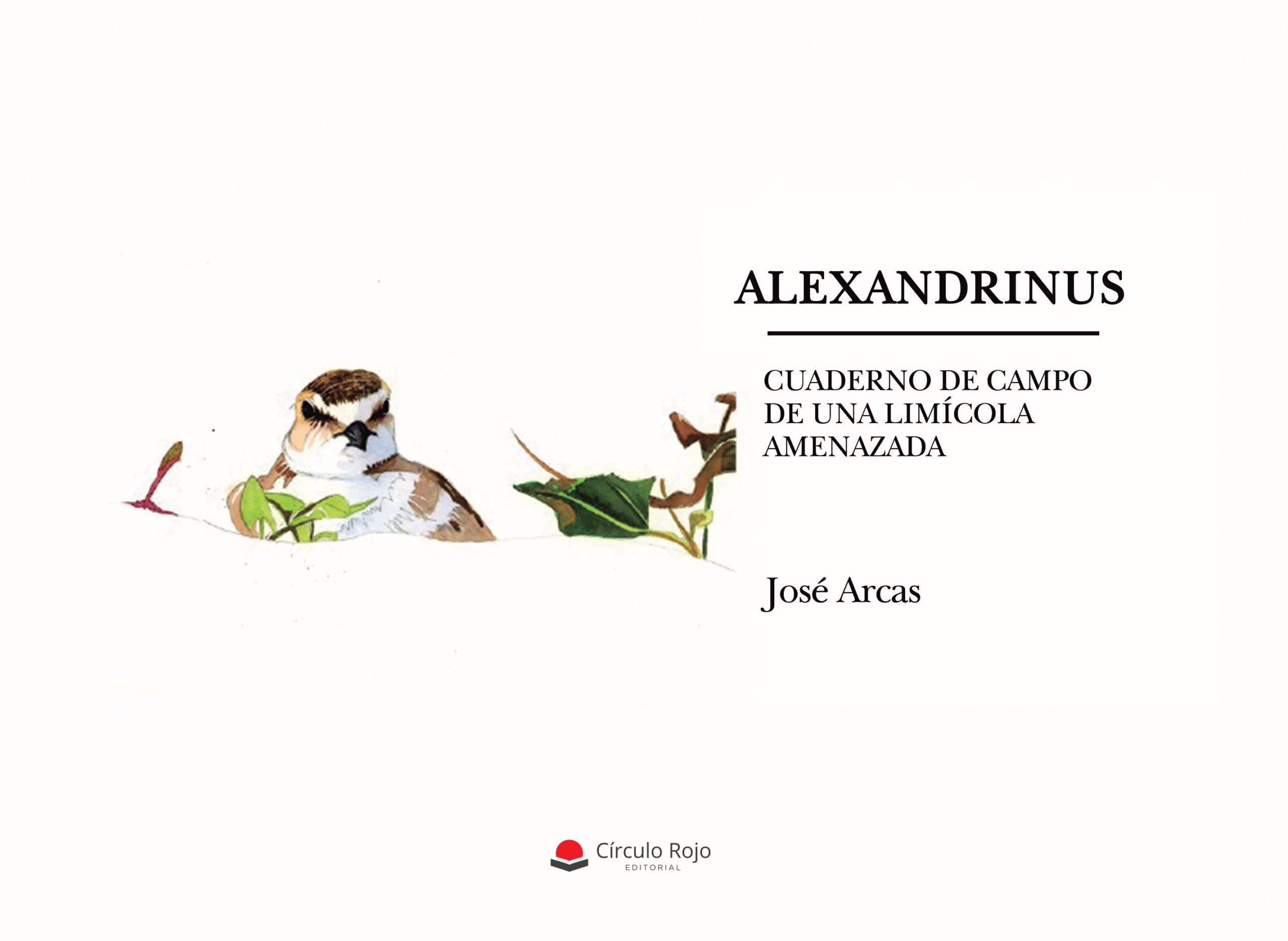«ALEXANDRINUS. Cuaderno de Campo de una limícola amenazada»