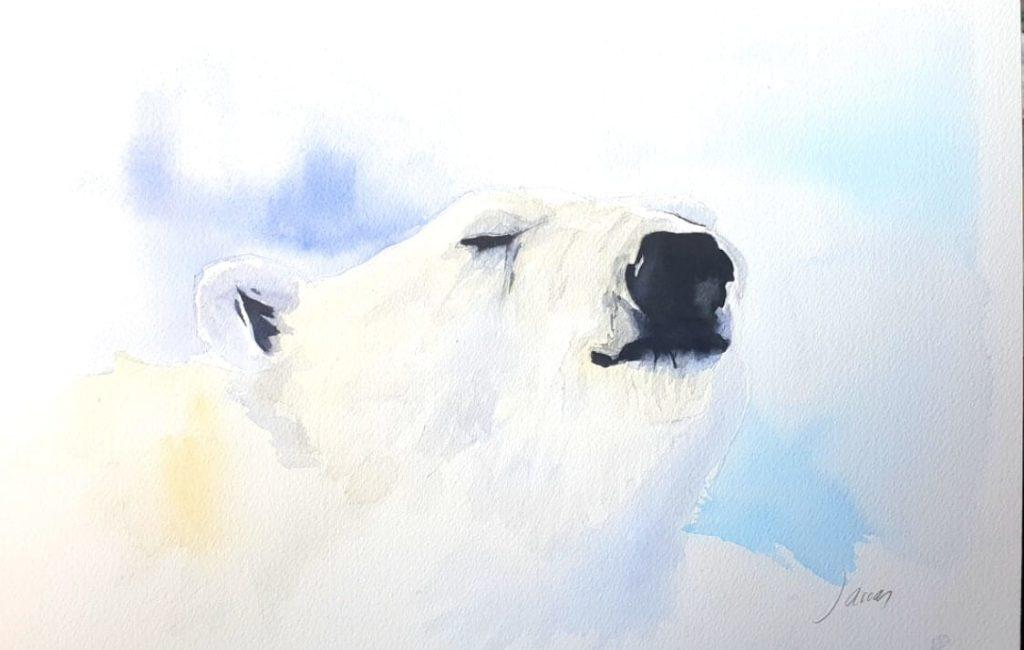 ¿Con que sueñan los osos polares?